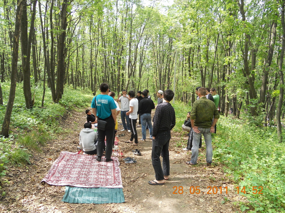 На природе отдых студентов фото 613-223